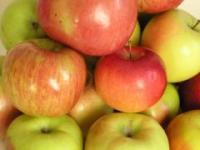 4 яблока в день - спасение для сосудов