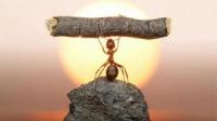 13 вещей, которых избегают сильные личности